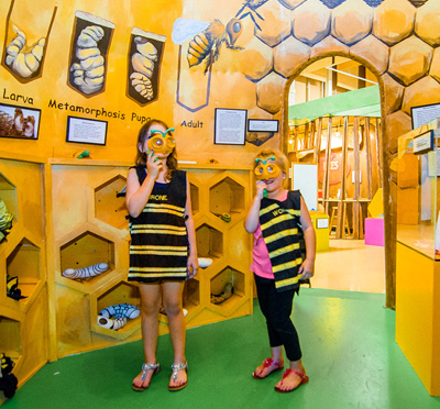 Bee hive learning exhibit and children interacting