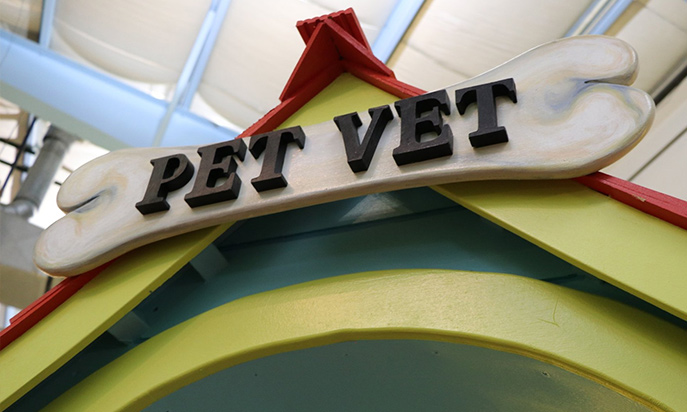 Pet Vet Exhibit at The Discovery Center of the Southern Tier